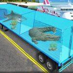 Transport Sea Animal