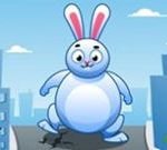 Giant Rabbit Run